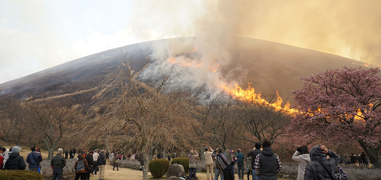 大室山の山焼き