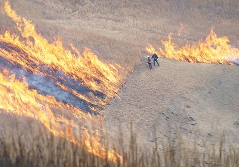 炎を間近で体感できます