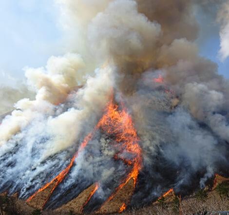 山麓から山外側を焼く「全山焼き」